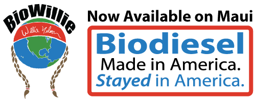 biodiesel3