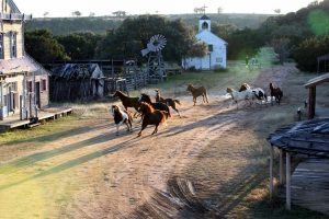 luckhorses