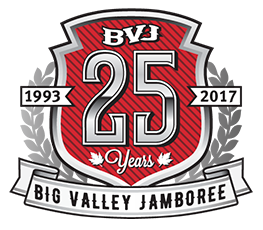 logo-25-years-alt_clr